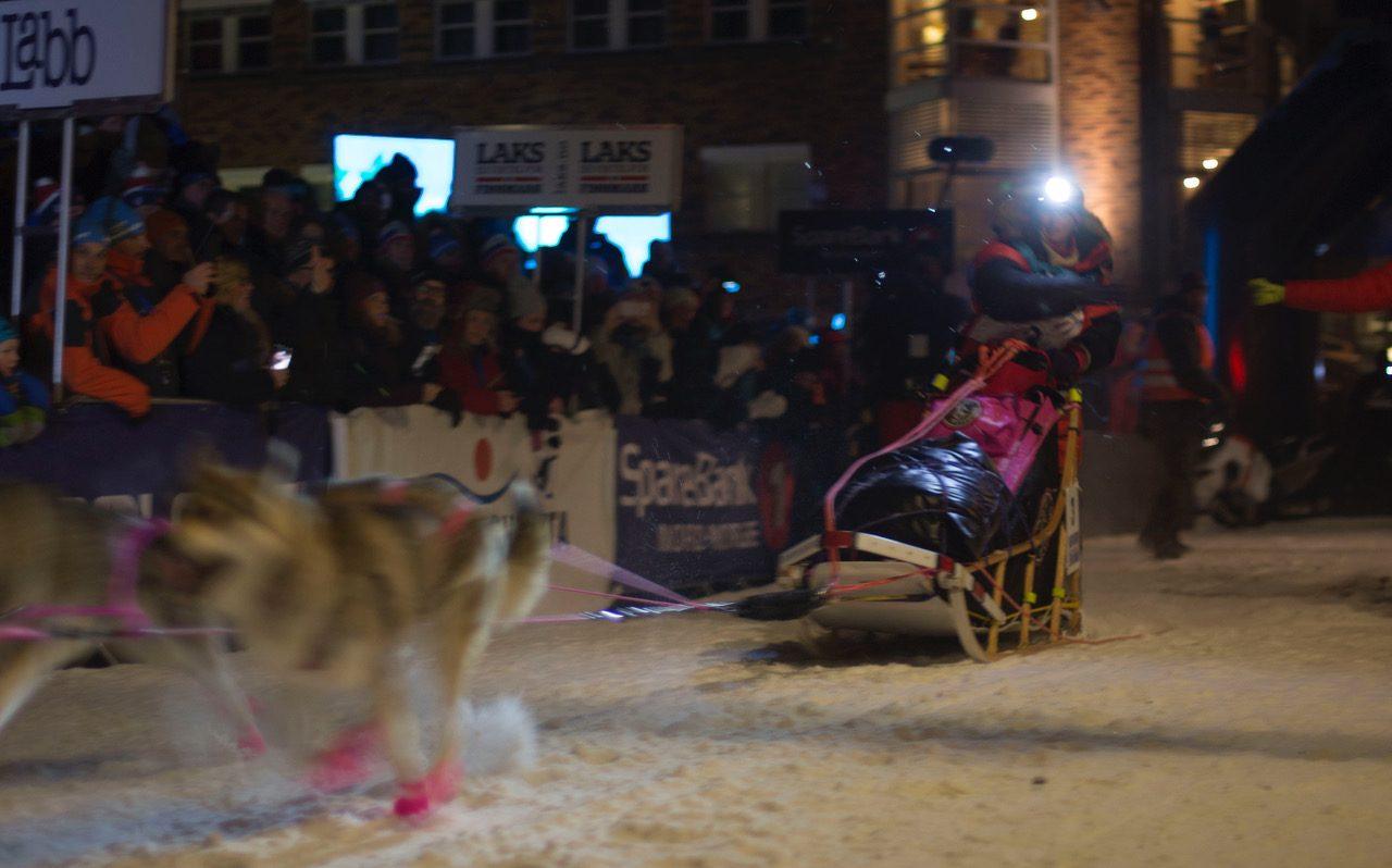 Jana Henychova og de renrasede hundene starter FL-1200 fredag kveld. I dag starter FL-junior og FL-500 kl 13:00.